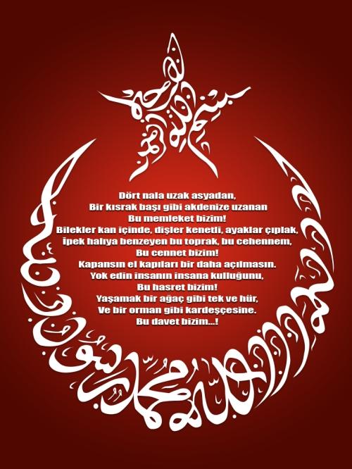 Vatan Bayrak şiirleri Ilhan Erolun Bloğu